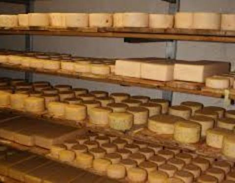 Cheese Diary - Farms in Mühlwald and Lappach